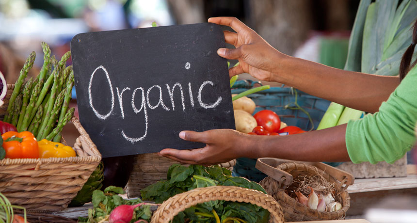 5 Reasons to Choose Organic Foods