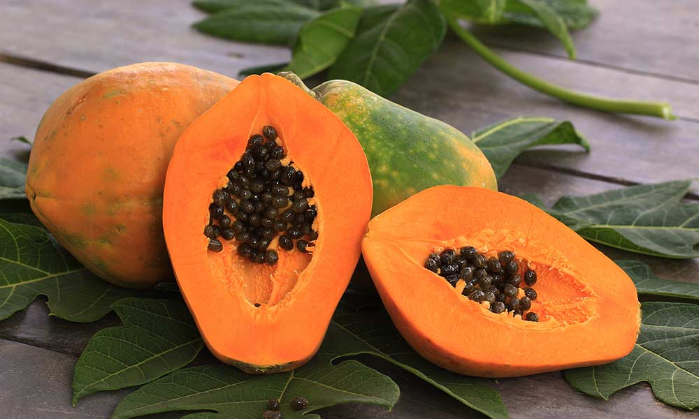 Health Benefits of Papaya Fruit Leaves and Seed